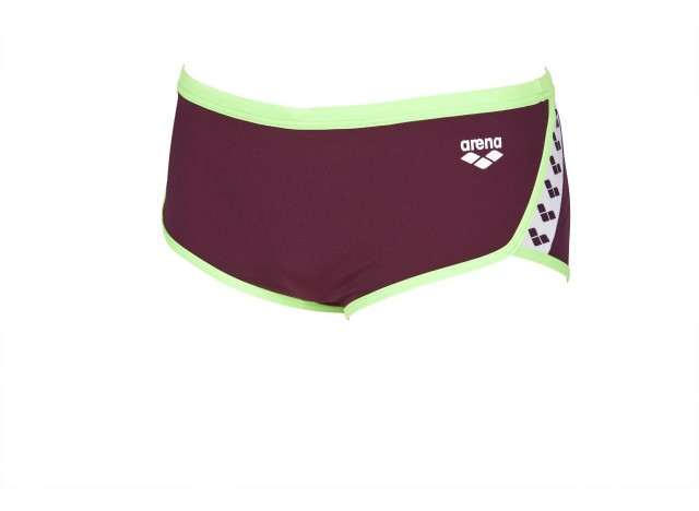 Arena Men's Team Stripe Red Wine / Shiny Green